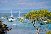 Fotografie Panorama der Küste von Porquerolles in Frankreich