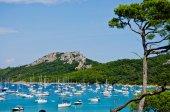 Fotografie Insel Porquerolles. Karibik-Strand in Frankreich