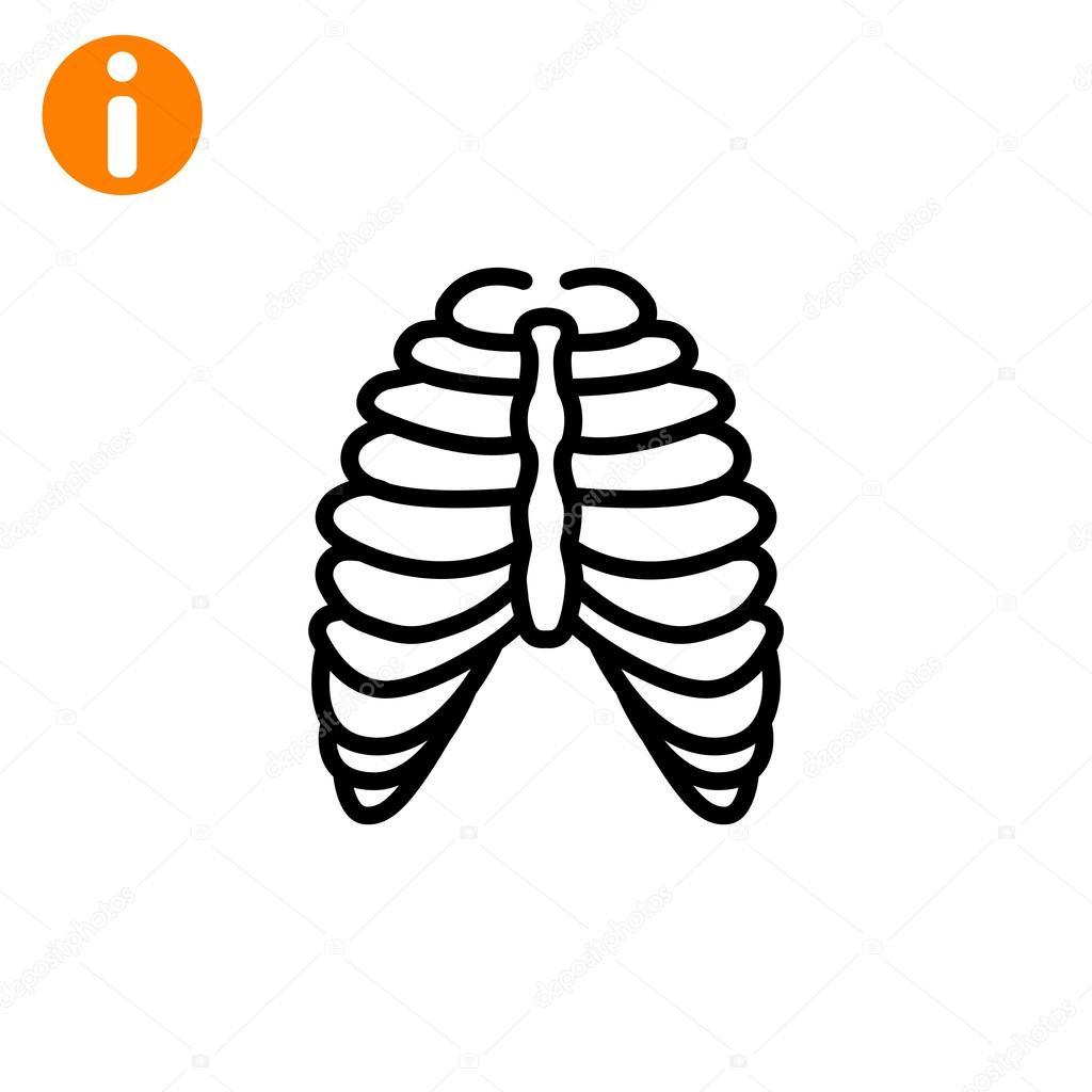 Menschlichen Brustkorb-Symbol — Stockvektor © Mr.Webicon #102021374