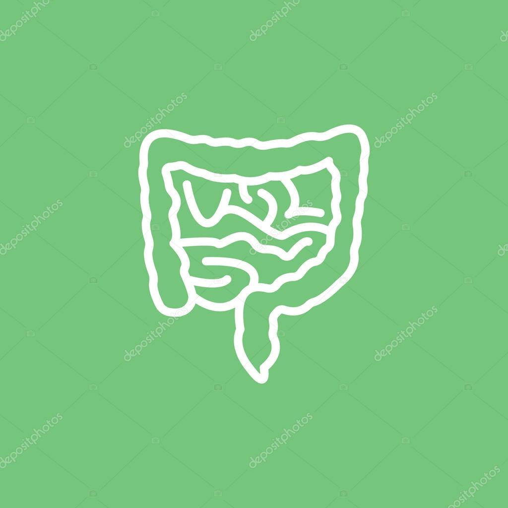 icono de los intestinos humanos — Archivo Imágenes Vectoriales © Mr ...