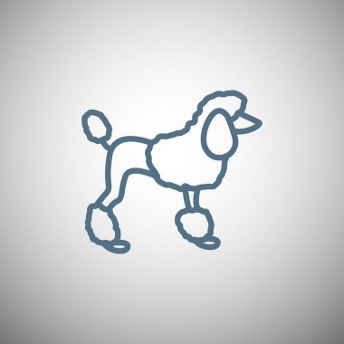 French poodle icon