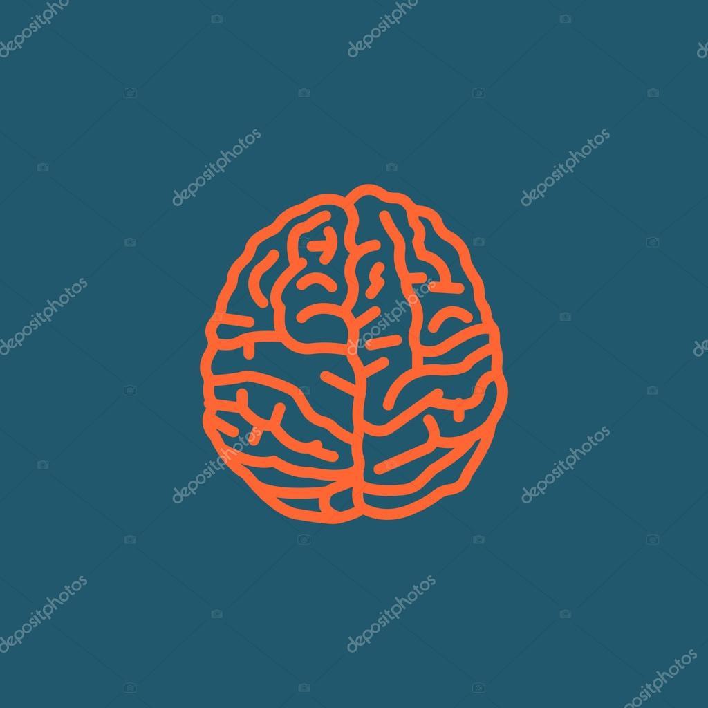 Anatomía del cerebro icono — Archivo Imágenes Vectoriales © Mr ...