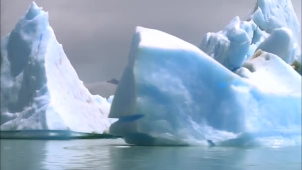 View of the White Icebergs in Antarctica