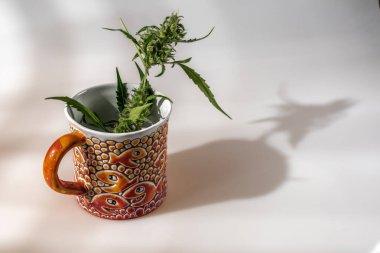 Color porcelain mug on white background with reflection and marijuana green ripened flower