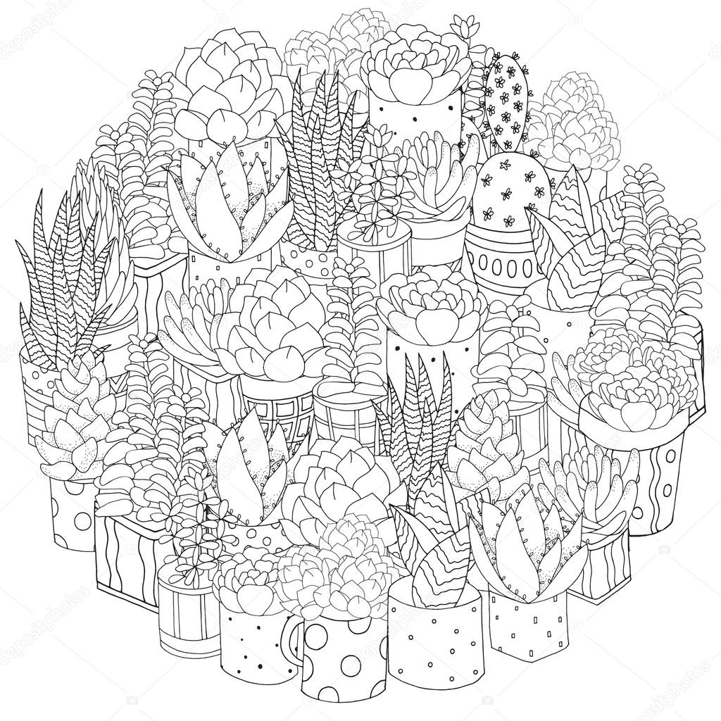 Set of succulents, cactuses and pots — Stock Vector ...