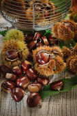 Autumn chestnuts on table