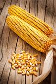 Fotografie Sušený zrna z kukuřice