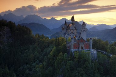 Beautiful evening view of the fairy tale Neuschwanstein castle, with autumn colours during sunset, Bavarian Alps, Bavaria, Germany stock vector
