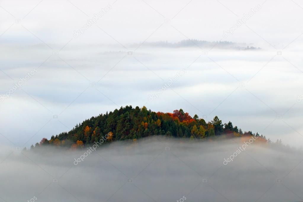 Hill with autumn trees