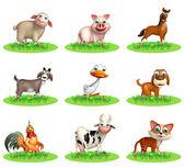 Fotografie Gruppe von Nutztieren
