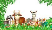 Fotografia gruppo di animale da fattoria