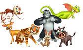 sbírku divokých zvířat