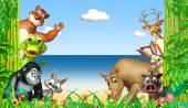 Photo group of  wild animal
