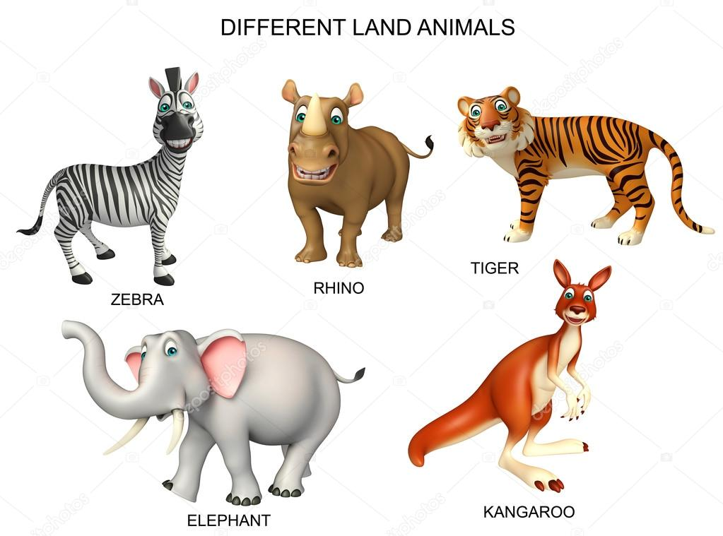 Group of animal chart — Stock Photo © visible3dscience ...
