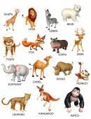 Fotografia grafico degli animali selvatico