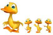 Fotografie Gruppe von Duck Sammlung
