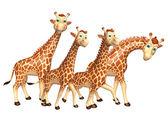 Fotografia gruppo di raccolta di giraffa
