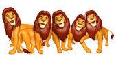 skupina z kolekce Lion