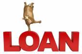 Fotografie Rhino cartoon character with loan sign