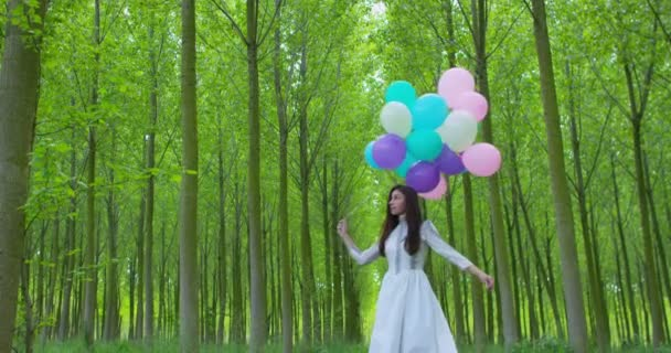 Woman with balloons in the Meadow