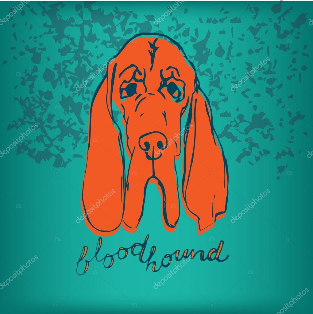 Perro Bloodhound De Color Con Letras Impresion De La Camiseta Del