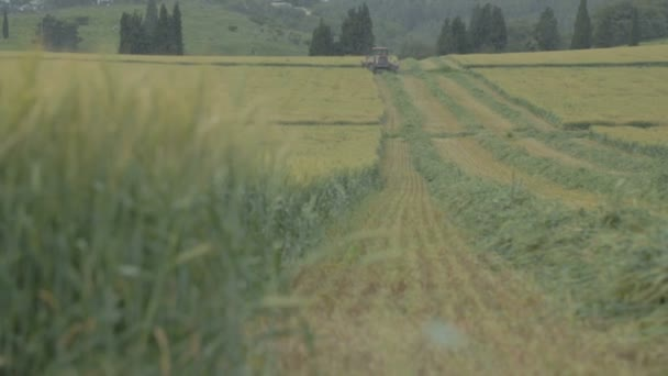 Traktor, sklizeň v poli