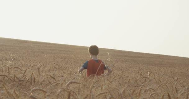 Fiatal fiú a superman köpeny állt egy aranyszínű Búzamező