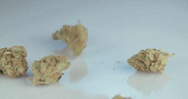 Makro snímek léčivé marihuany na bílé reflexní nackground