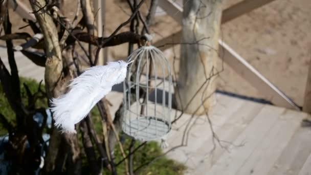 weiße Feder wiegt sich im Wind