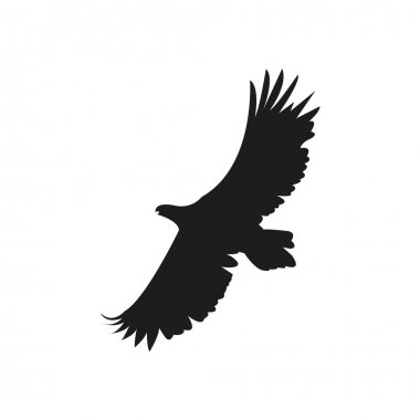 Vector silhouette of the eagle in flight with wings spread