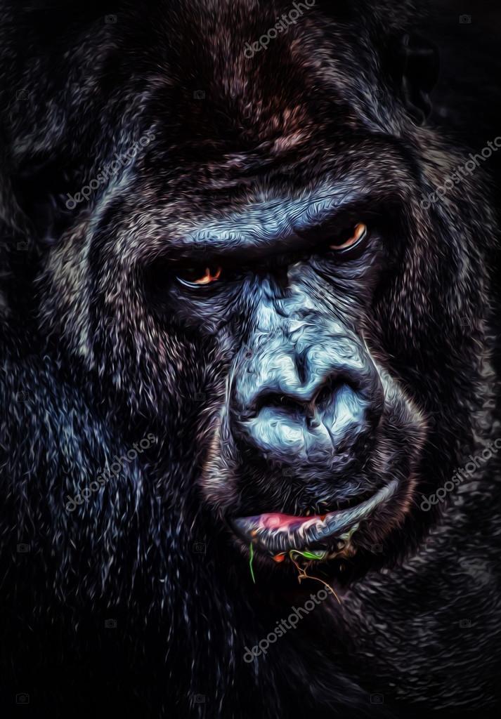 angry Gorilla portrait