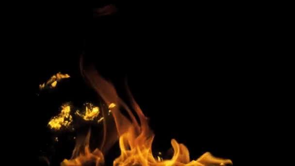 Gyullad tűz elszigetelt fekete háttér
