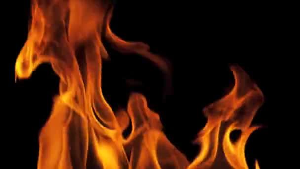 Hořící oheň plameny celá obrazovka