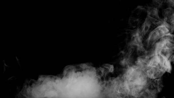 Fire Smoke From Bottom Up Black Background Stock Video C Dianaopryshko 114549238