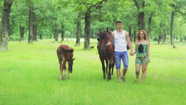 Lovers ride horses in the park, Slow Motion