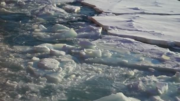 Chunks of ice in the water float by. Thick chunks of blue ice float in the water. Snow on pieces of ice. Blue ice. View along the ships side. Arctic. A Seagull flies by
