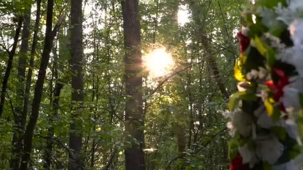 Esküvő ív nyári erdőben