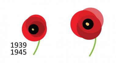 Poppy of Remembrance Day