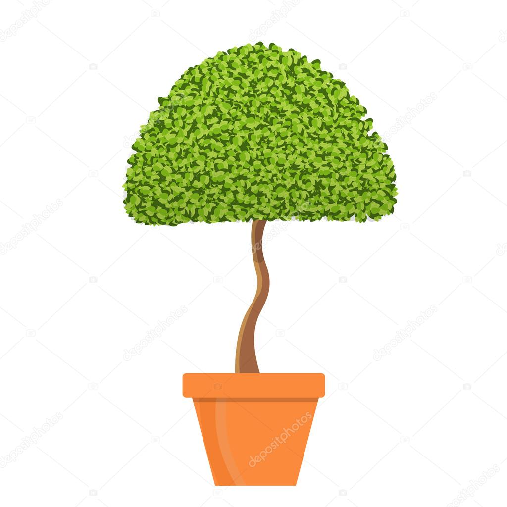 Tree in pot vector illustration