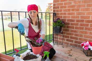 Girl with flowerpot replant flower of african violet
