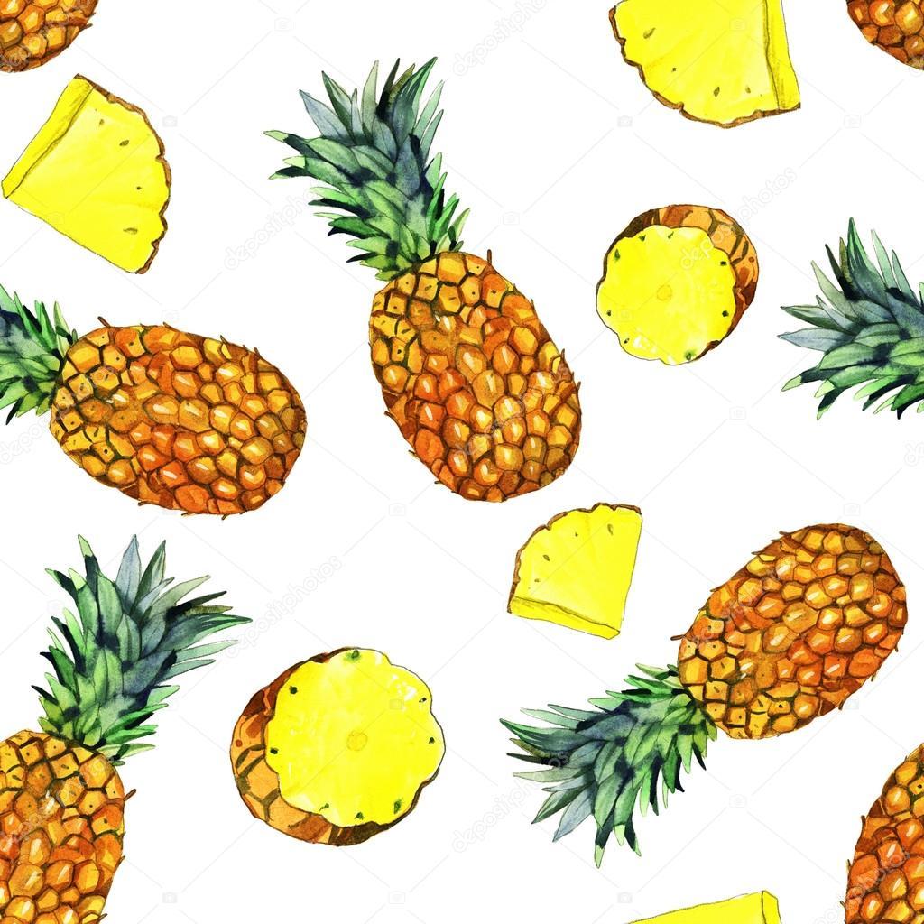 watercolor pineapple illustration � stock photo 169 shat88