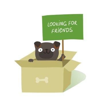 dog sitting in cardboard box