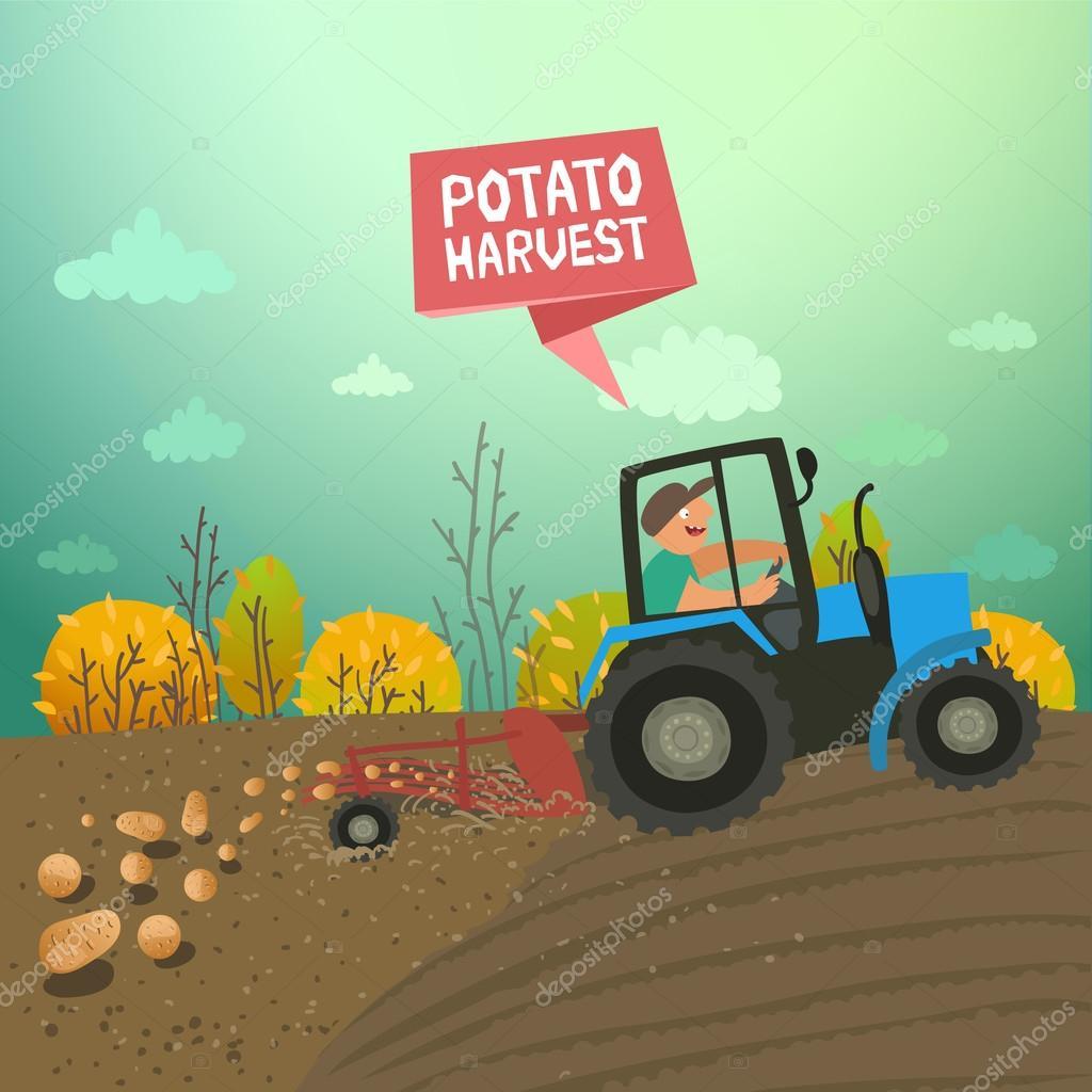 Tracteur de r colte de pommes de terre image vectorielle creatarka 105374164 - Pomme de terre recolte ...