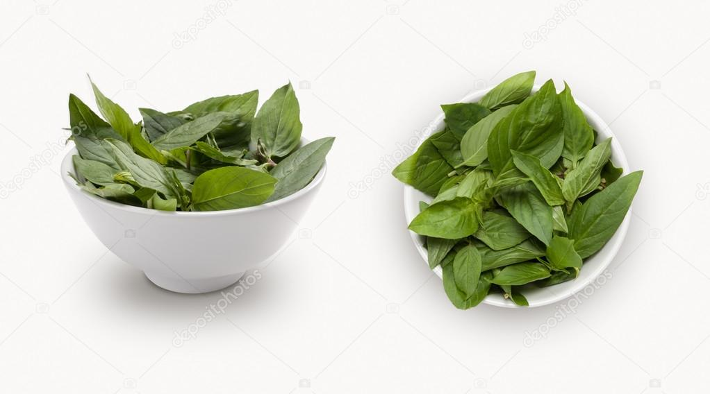 fresh Thai basil corn isolated on a white background