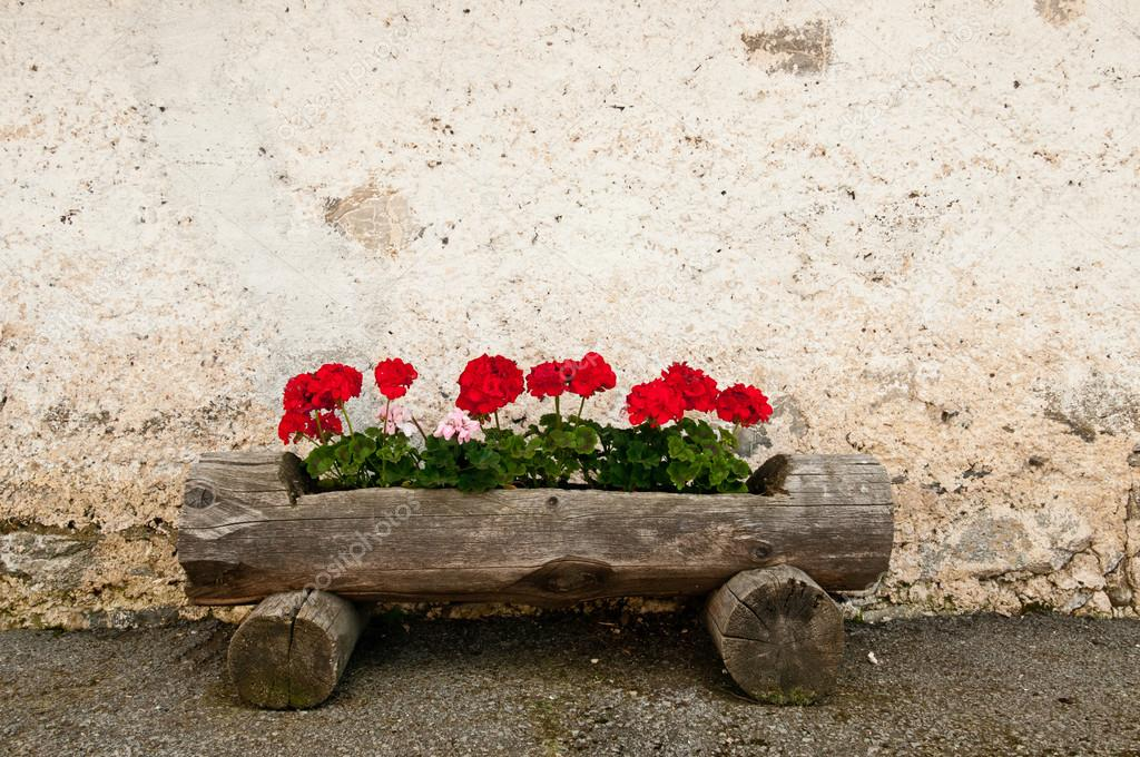 Rustic Old Wooden Planter Box With Red Geraniums And Grunge Wall In