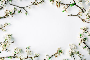 Wreath frame with white flowers and branches isolated on white background. flat lay, overhead view, top view stock vector