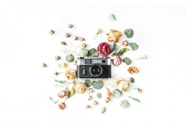 Flat lay. Vintage retro photo camera, beige roses and green leaves, top view stock vector