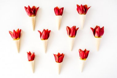 cones with red tulips