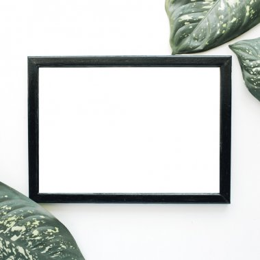 Empty photo frame and green leaves