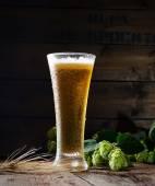 Üveg és a komló, a sör